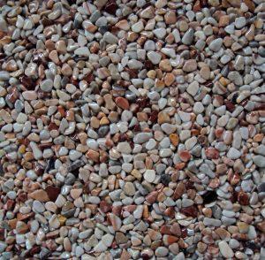 Steinteppich - Koralle